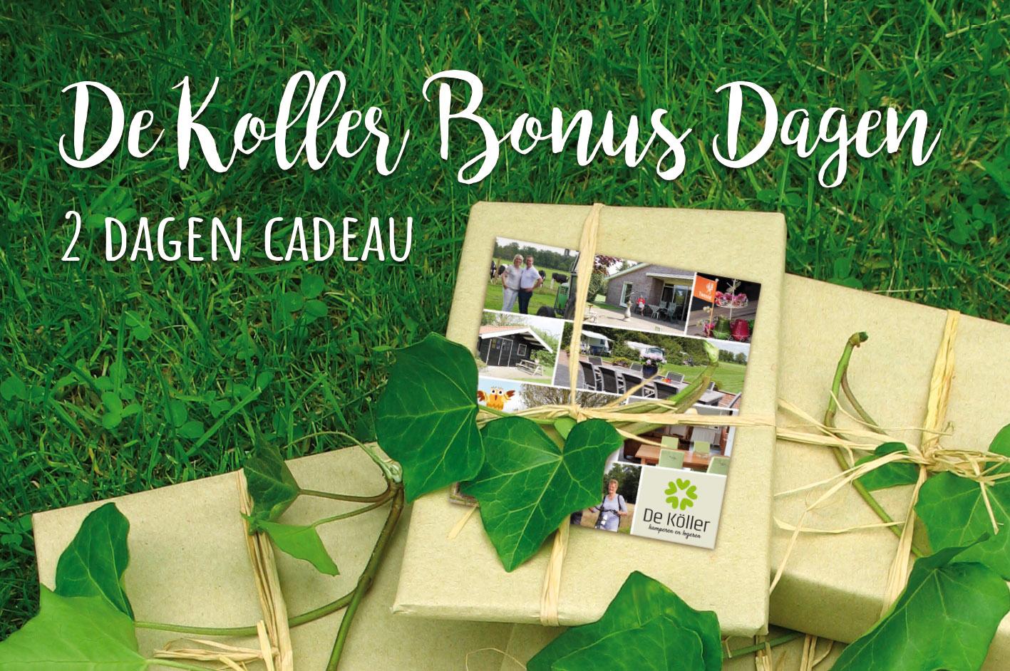 Camping De Koller